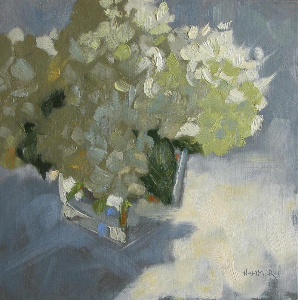 """White hydrangeas 8x8 oil"" original fine art by Claudia Hammer"