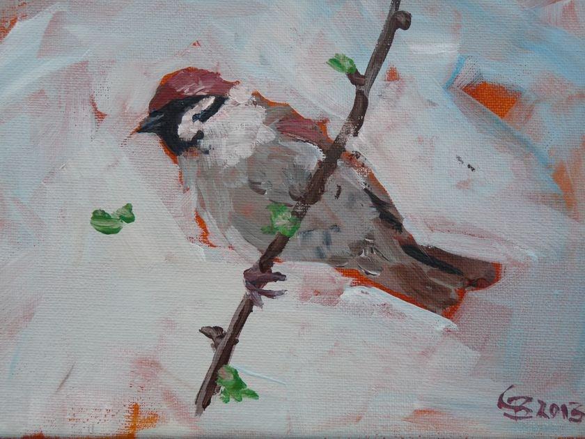 """""""Sparrow"""" original fine art by Claudia Brandt"""