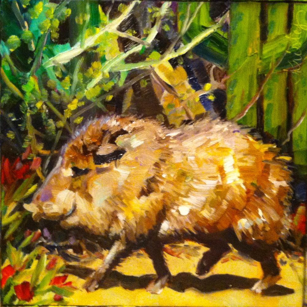 """JAVELINA"" original fine art by Kristy Tracy"