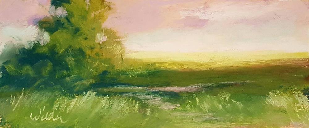 """Early Morning Light"" original fine art by Judy Wilder Dalton"
