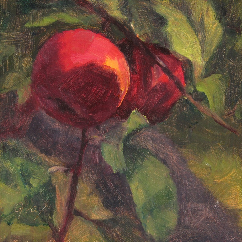 """Orchard Series - Red Apples"" original fine art by Naomi Gray"