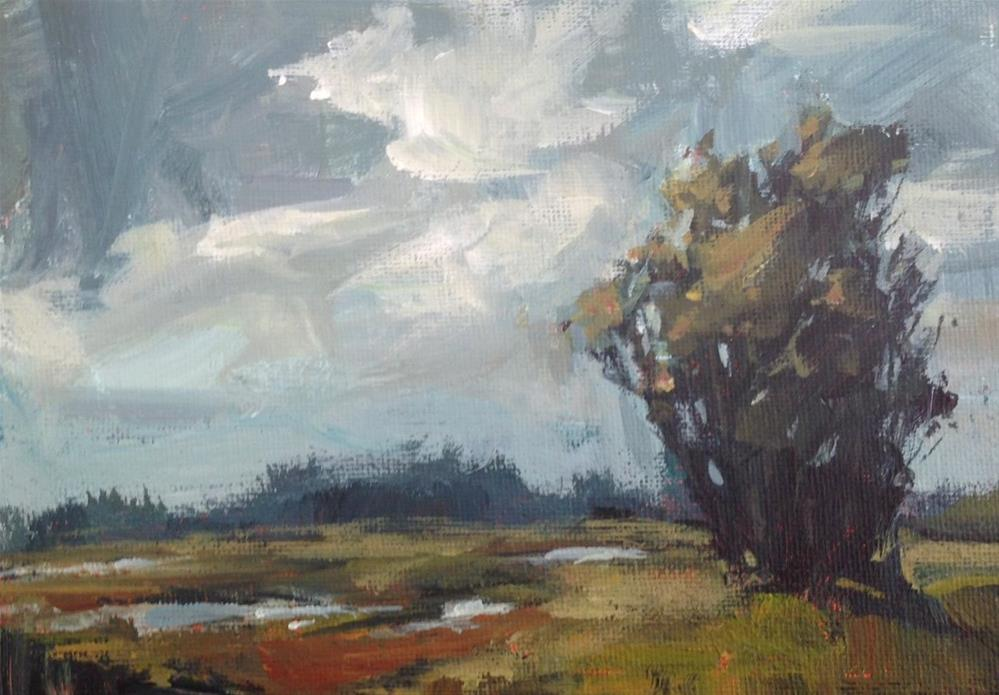 """Moody Marsh"" original fine art by Shannon Bauer"