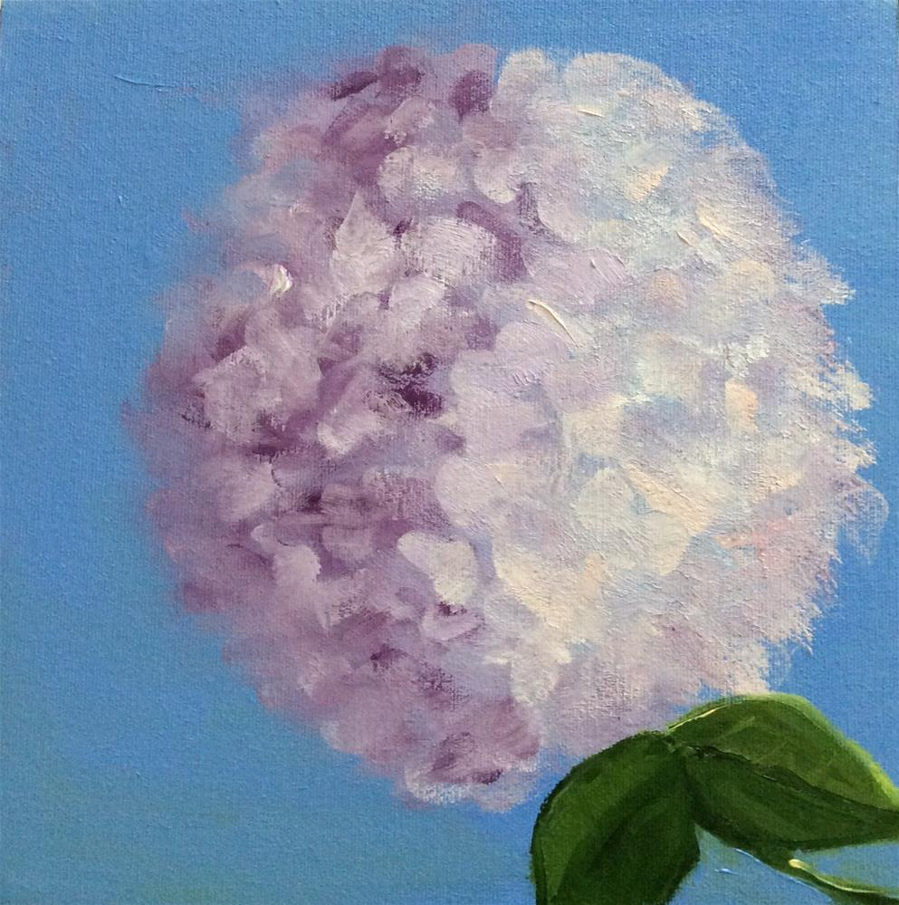"""Sole Hydrangea"" original fine art by Patty Barnes"
