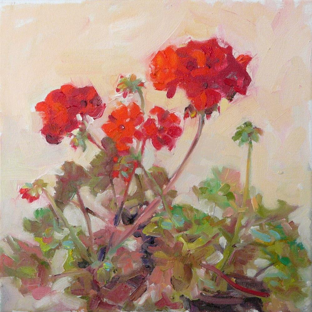 """June Geranium,still life,oil on canvas,12x12,price$375"" original fine art by Joy Olney"