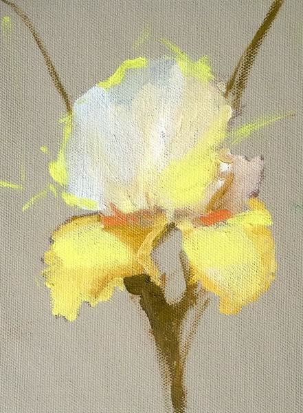 """Still Life Floral Painting, Flower Art Yellow Iris by Colorado Artist Susan Fowler"" original fine art by Susan Fowler"