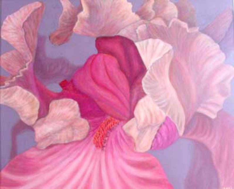 """""""Pink iris"""" original fine art by Carol Sakai"""