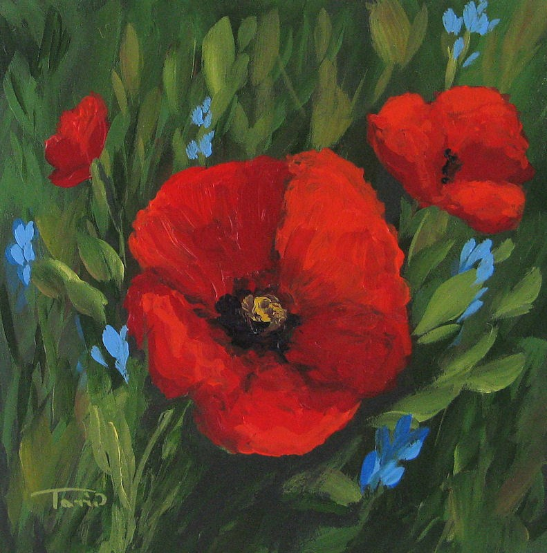 """New Year Poppies"" original fine art by Torrie Smiley"