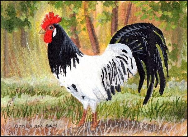 """King of the Barnyard"" original fine art by Patricia Ann Rizzo"