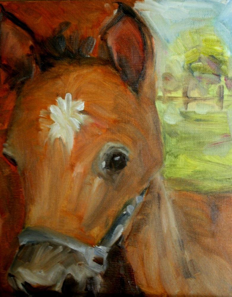 """Animal Faces"" original fine art by Maggie Flatley"