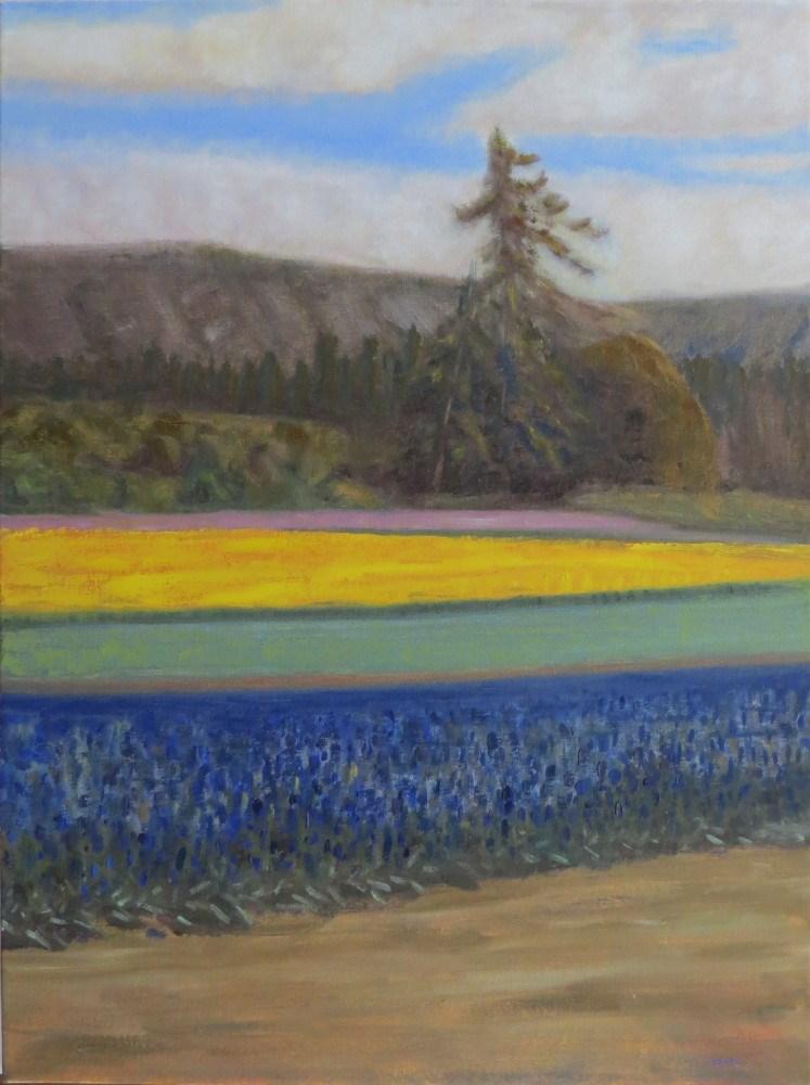 """""""Lone Fir in Field of Flowers"""" original fine art by Richard Kiehn"""