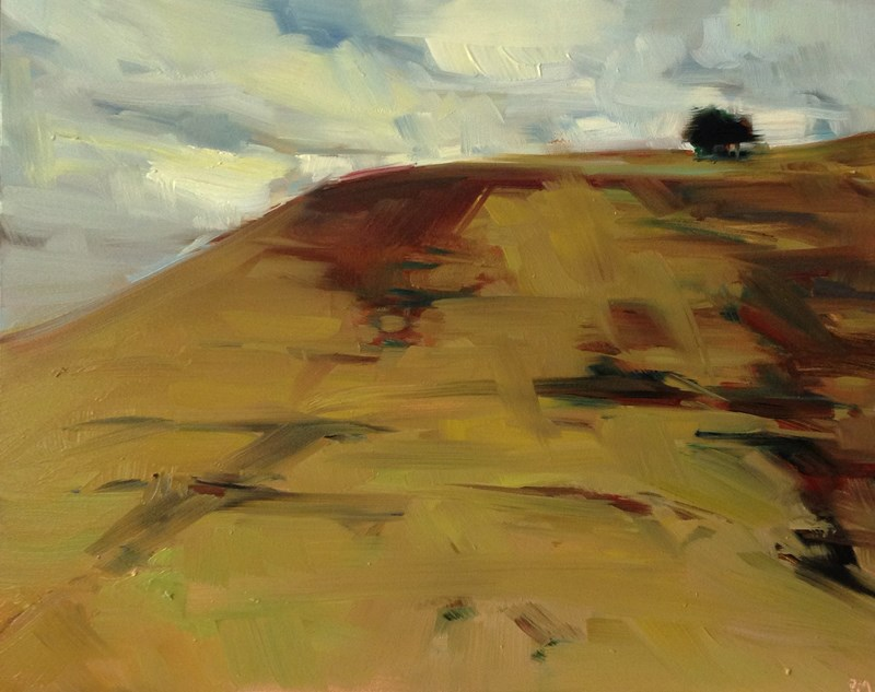 """The Painted Hills of Ochre"" original fine art by Patti McNutt"