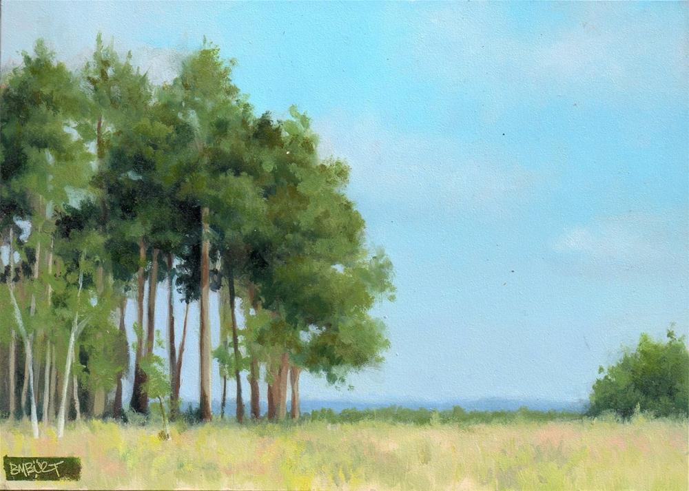 """""""Daily Diaper #267 Spring Trees Framed"""" original fine art by Brian Burt"""