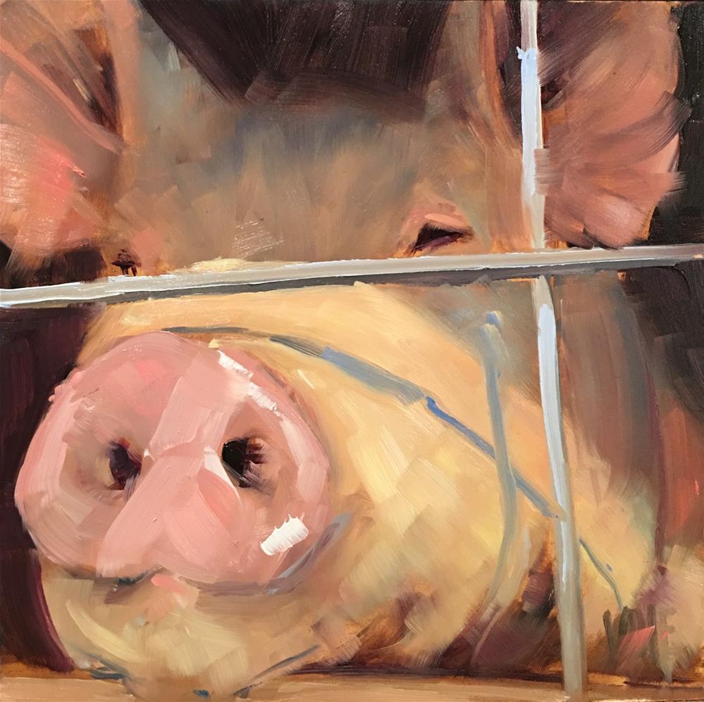 """""""#487 Pig Time"""" original fine art by Patty Voje"""