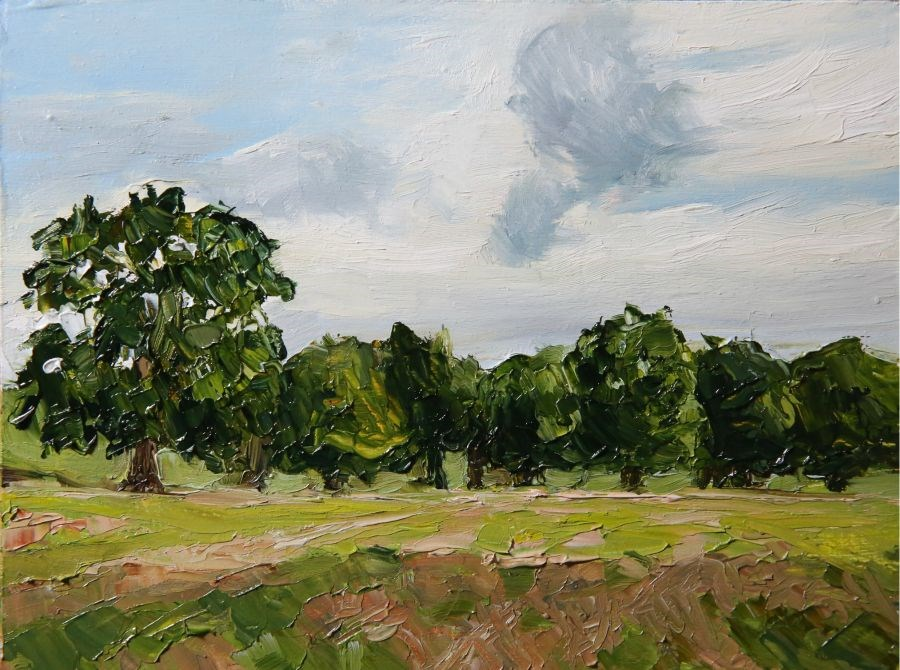 """Evening Clouds"" original fine art by Jethro Knight"