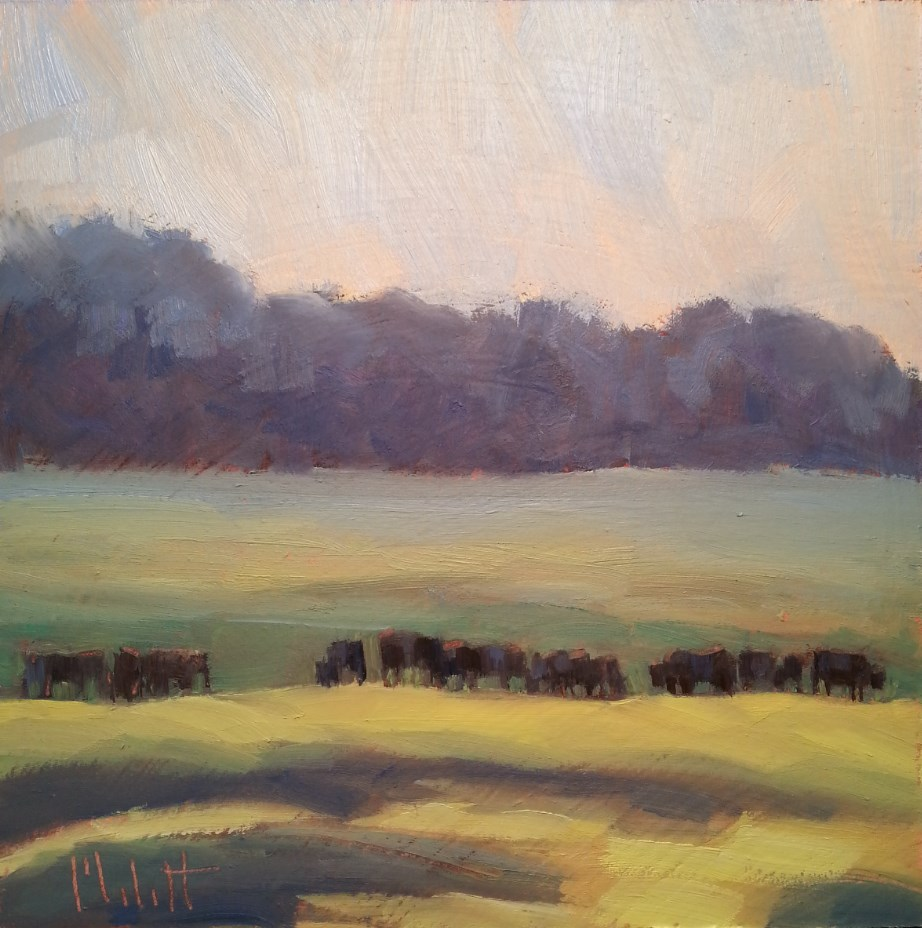 """The Cows are Home Angus Cattle Original Oil Painting"" original fine art by Heidi Malott"