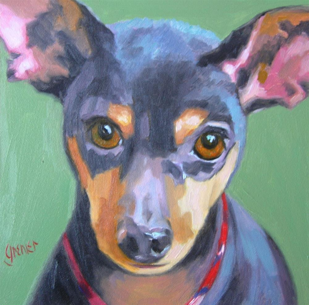 """Frankie the Min Pin"" original fine art by jean grenier"
