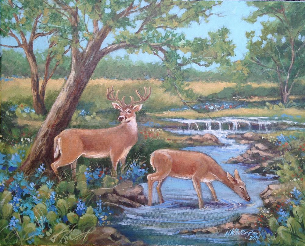 """Texas Hill Coyntry Deer"" original fine art by Margie Whittington"