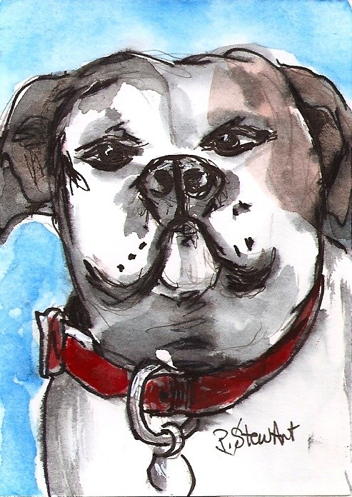 """ACEO Painting White Proud Boxer Dog Red Collar illustration Pet Penny StewArt"" original fine art by Penny Lee StewArt"