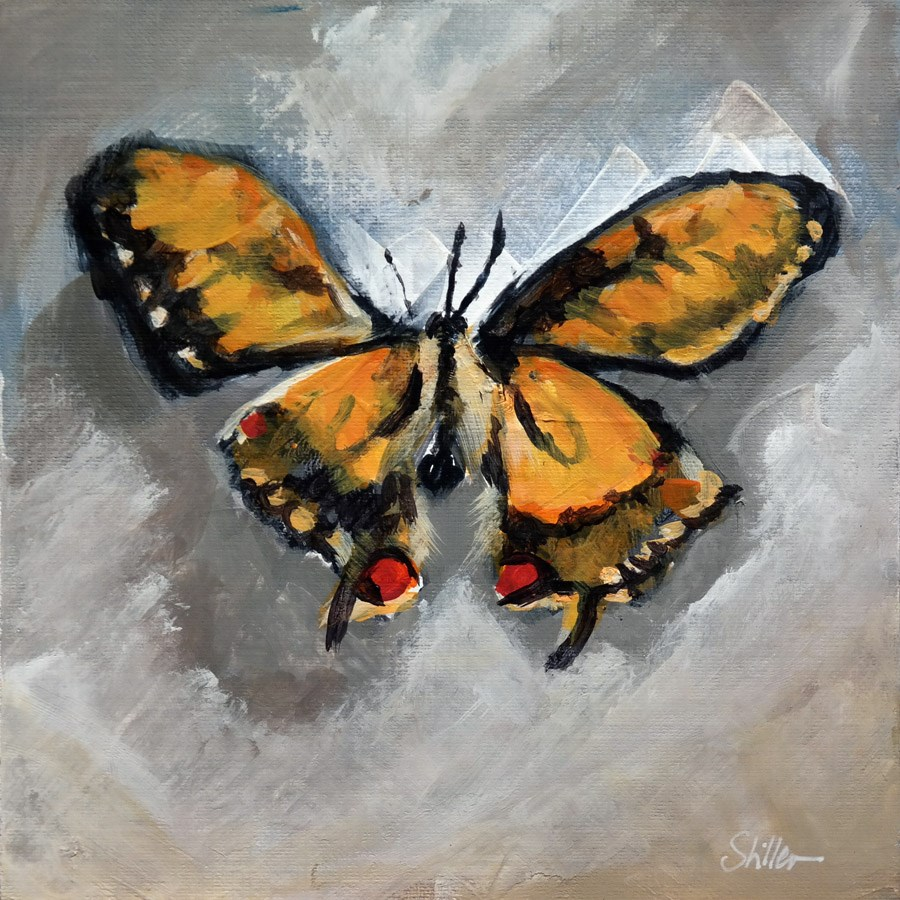 """1786 Butterfly in Orange"" original fine art by Dietmar Stiller"