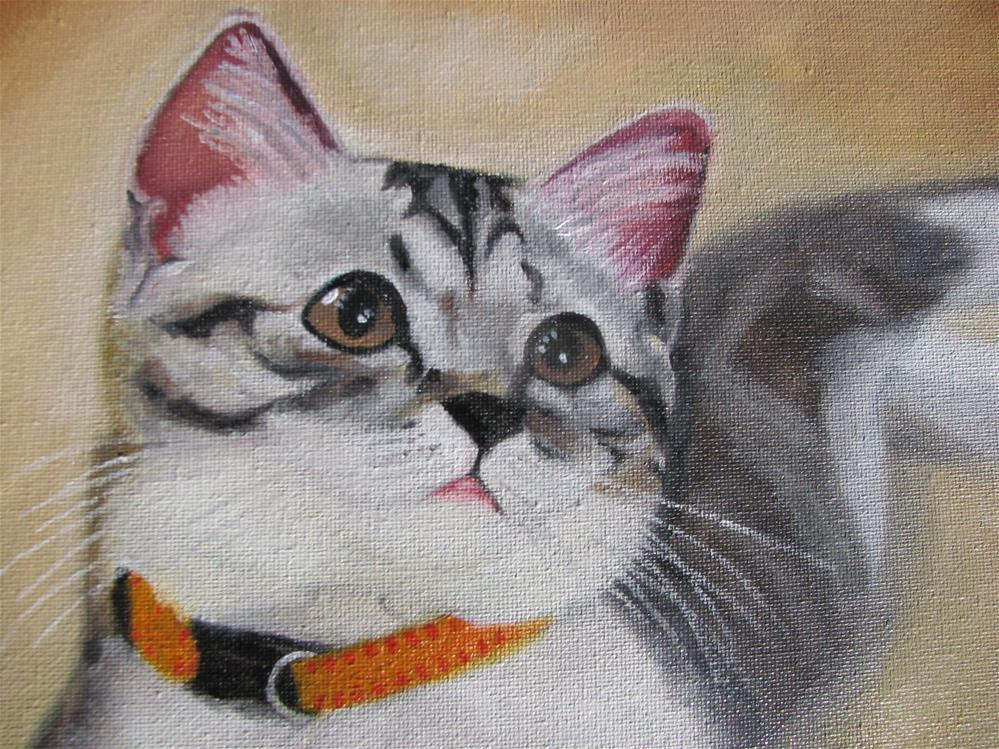 """Cat"" original fine art by Jiani Shan"
