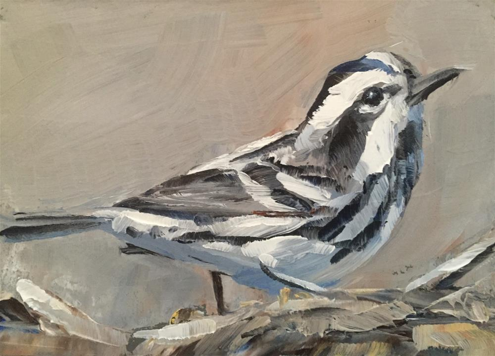 """Black and White Warbler"" original fine art by Gary Bruton"