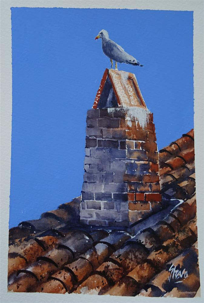 """Seagull on a chimney"" original fine art by Martin Stephenson"