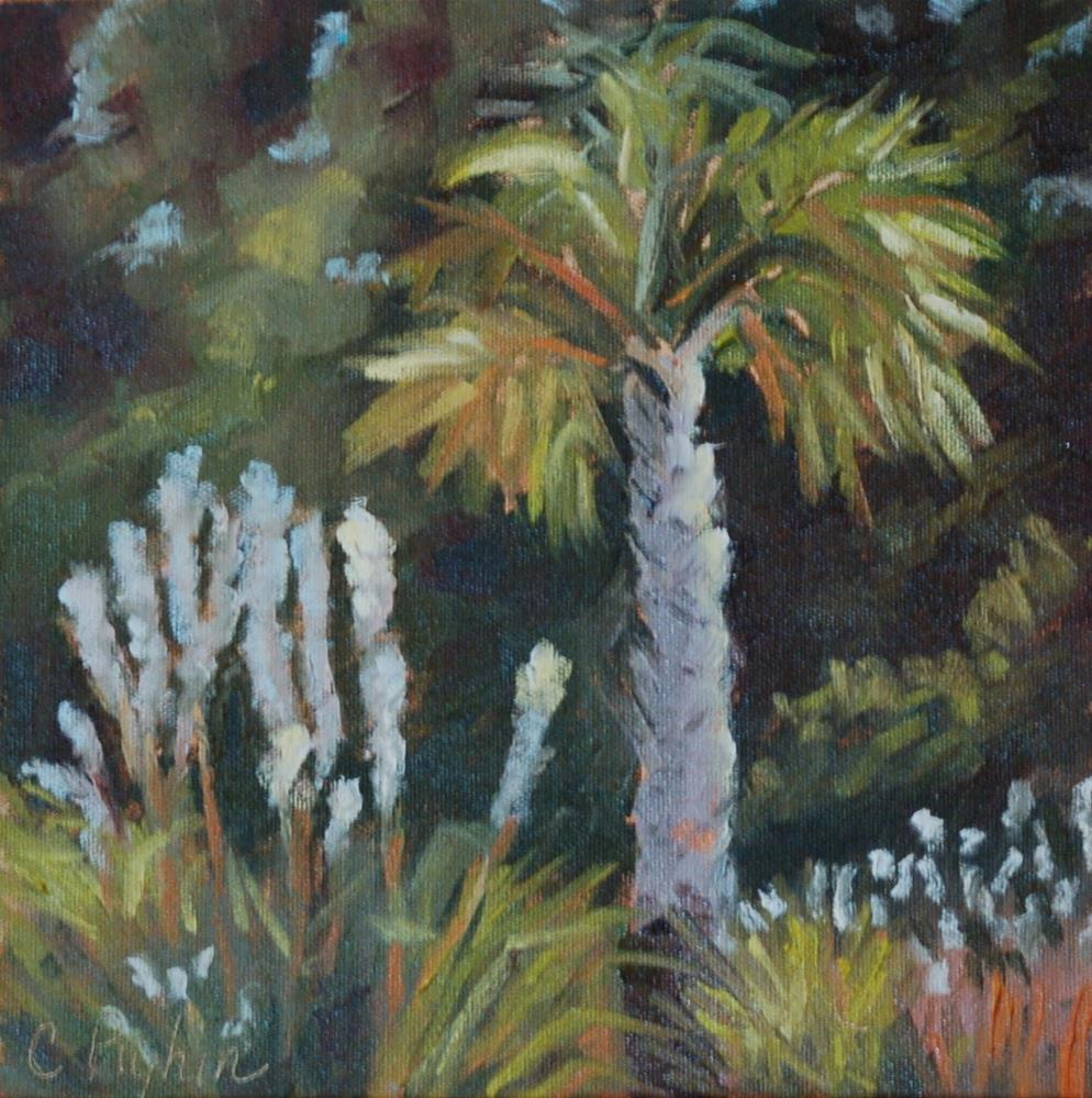 """Southern Palm"" original fine art by Carol Pighin"