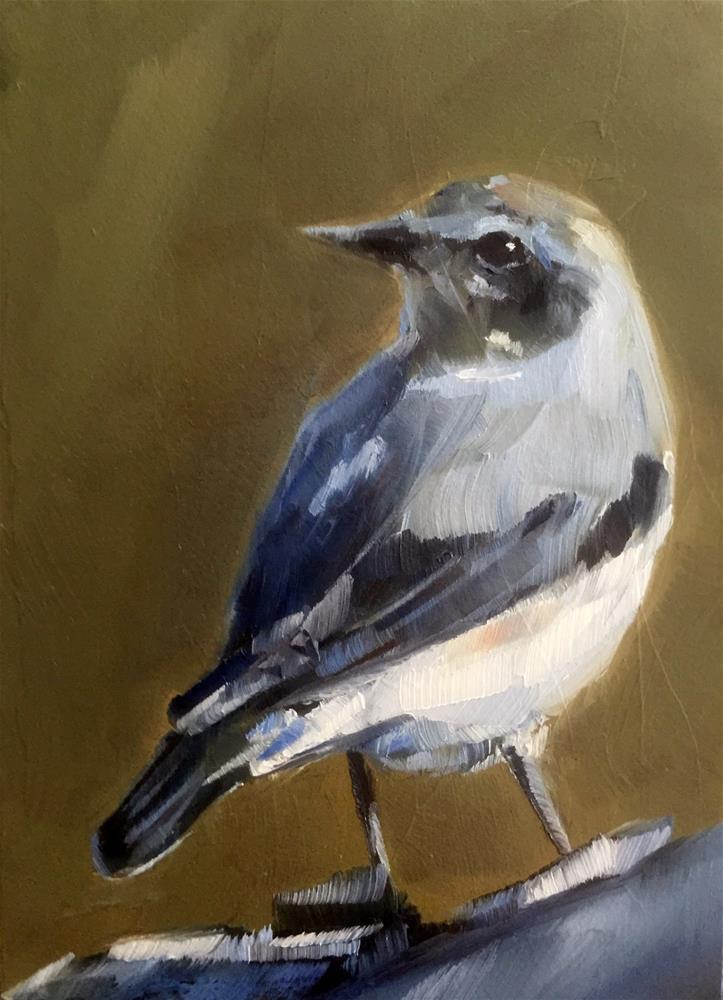 """Wheatear"" original fine art by Gary Bruton"