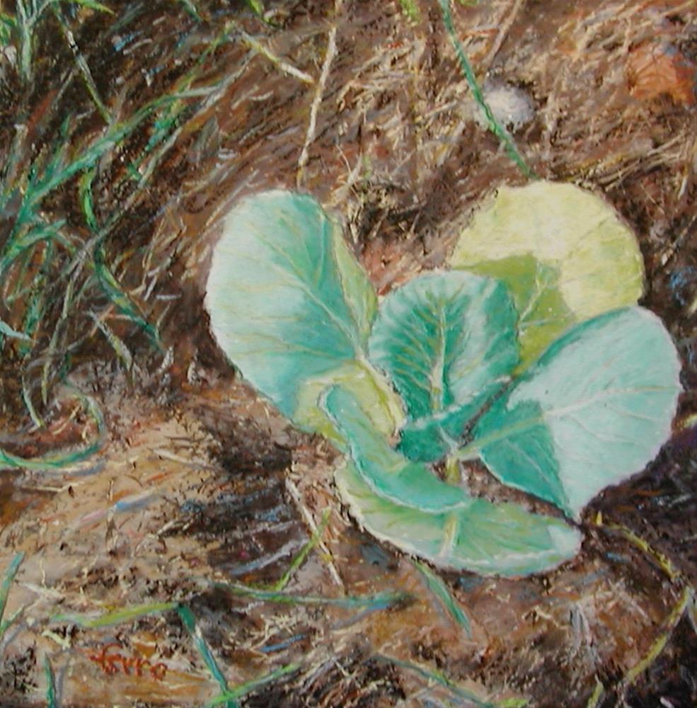 """Baby Brasscia"" original fine art by Susan Ferro"