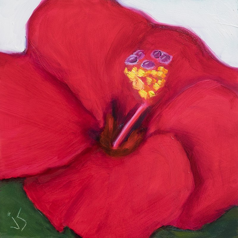 """Red Hot Hibiscus"" original fine art by Johnna Schelling"