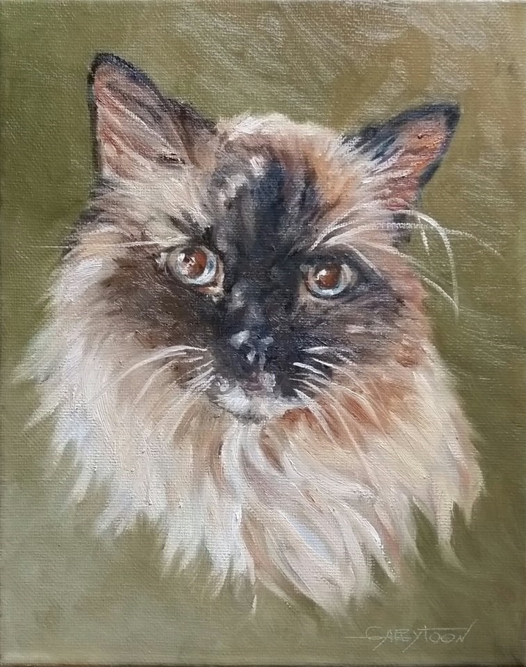 """Sweet Kitty"" original fine art by Gabriella DeLamater"