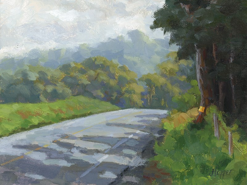 """Haleakala Road"" original fine art by Joanne Hopper"