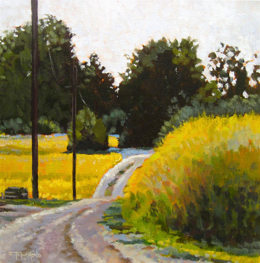 """Emmett Road View"" original fine art by Zack Thurmond"