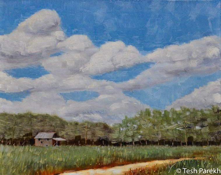 """Lenoir County"" original fine art by Tesh Parekh"