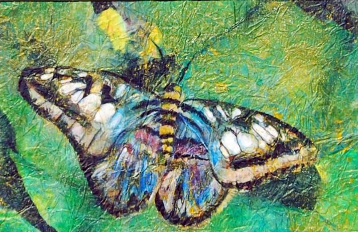 """""""Butterfly in Blue"""" original fine art by Maureen Baker"""