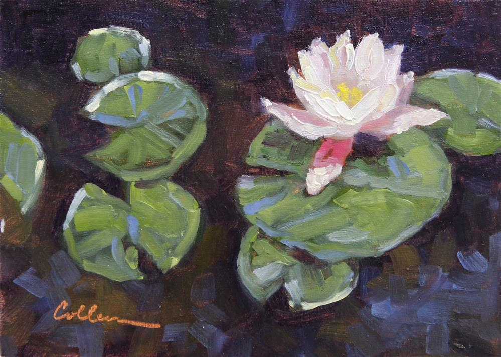 """Bloom on a Lily"" original fine art by Colleen Parker"