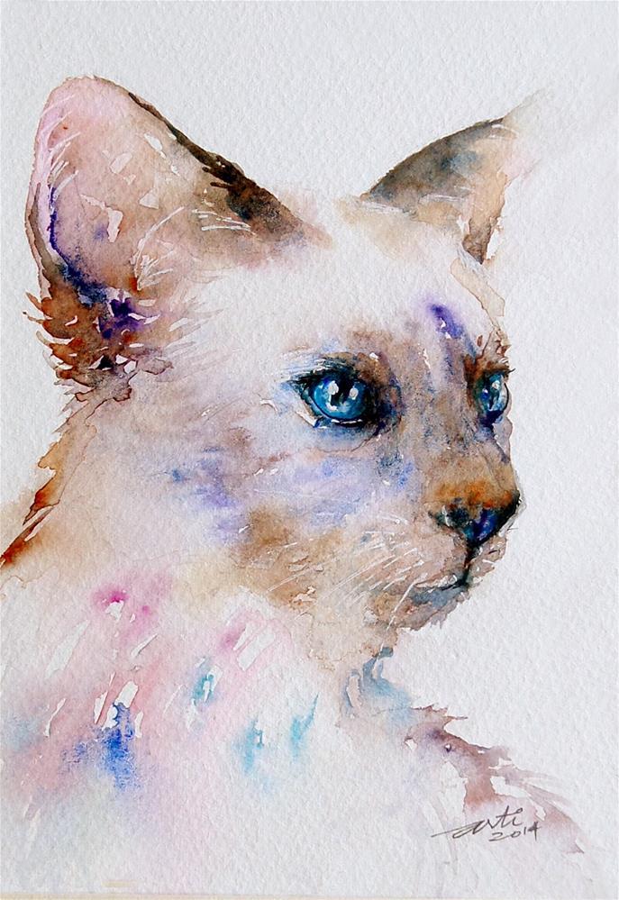 """White Siamese Cat"" original fine art by Arti Chauhan"