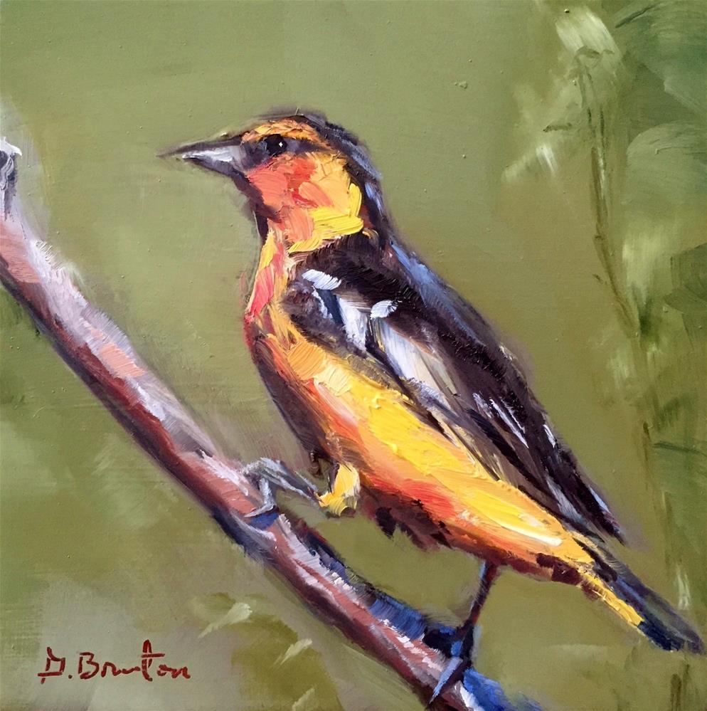 """Baltimore Oriole"" original fine art by Gary Bruton"