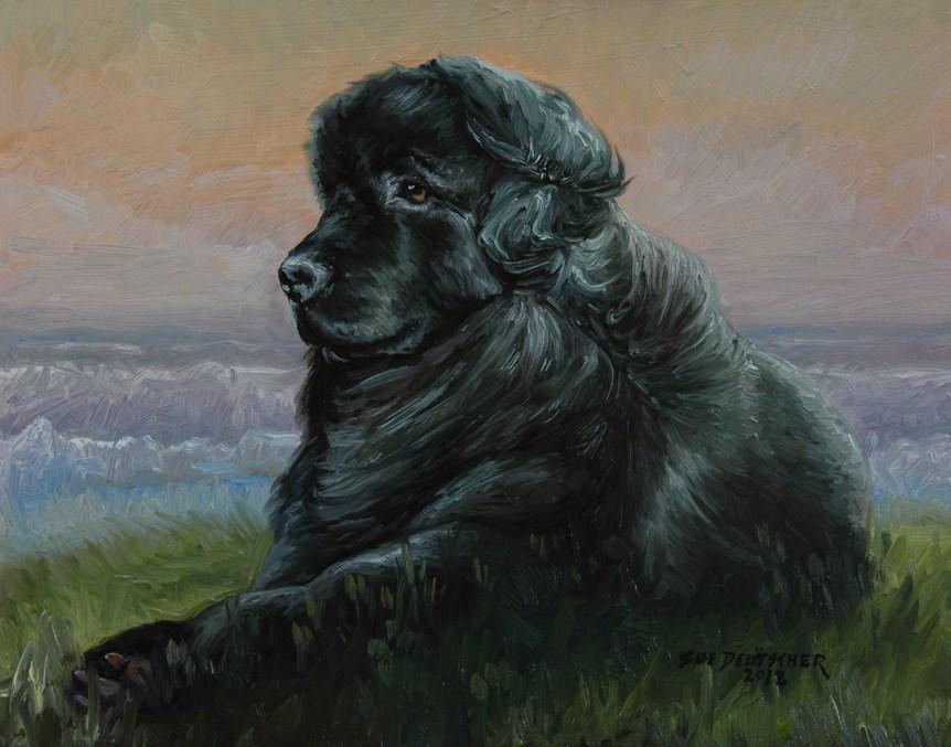 """""""Newfoundland Dog"""" original fine art by Sue Deutscher"""