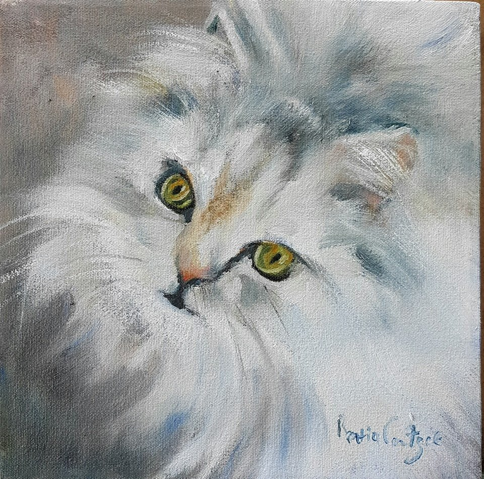 """Ball of fur"" original fine art by Rentia Coetzee"