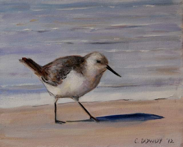 """Seabird Series II"" original fine art by Christina Dowdy"
