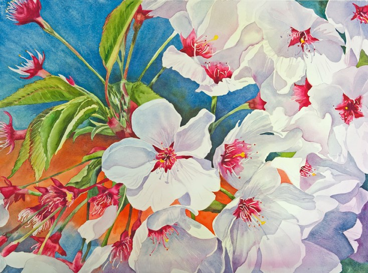 """Cherry Blossoms # 1"" original fine art by Diane Fujimoto"