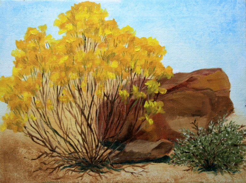 """High Desert Still Life - 2"" original fine art by Jean Nelson"