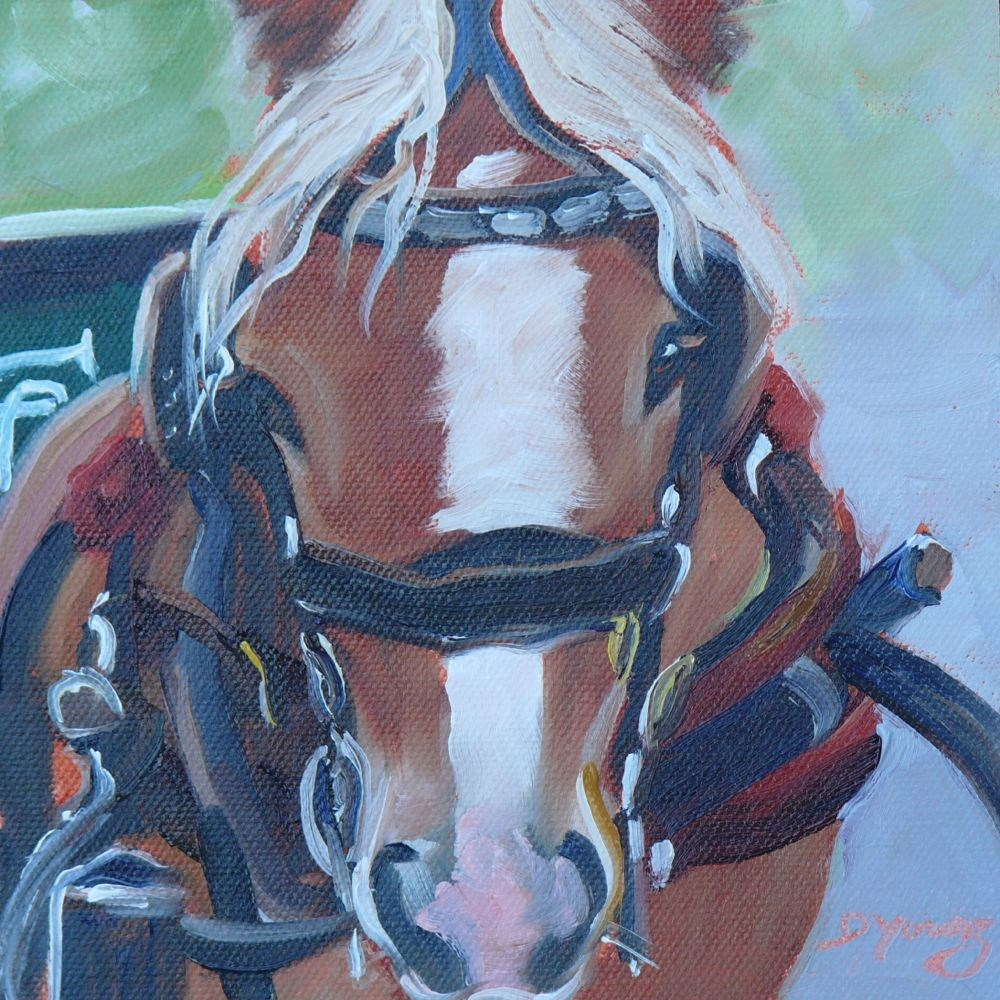 """Victoria Carriage Horse"" original fine art by Darlene Young"