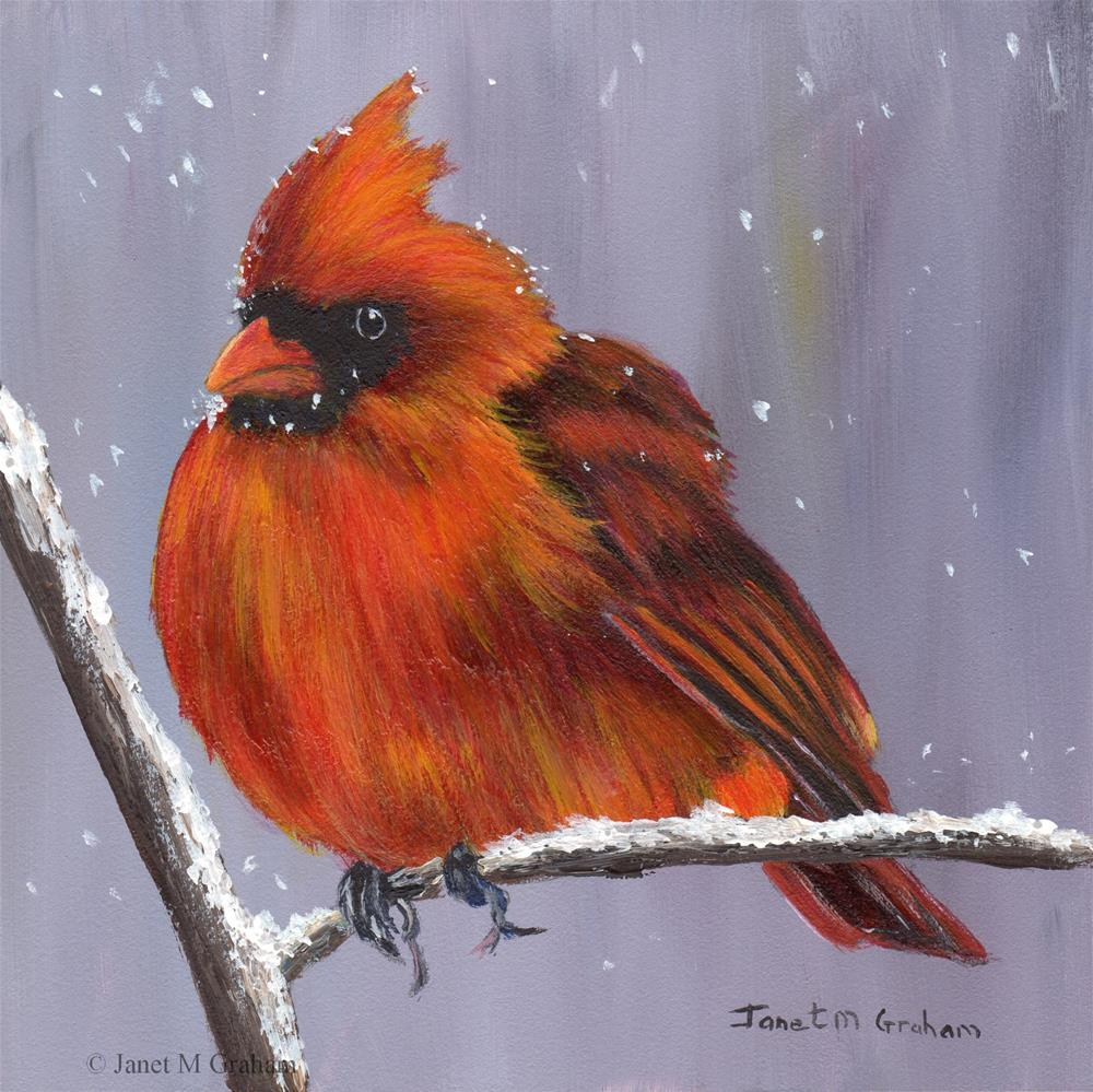 """Winter Cardinal"" original fine art by Janet Graham"