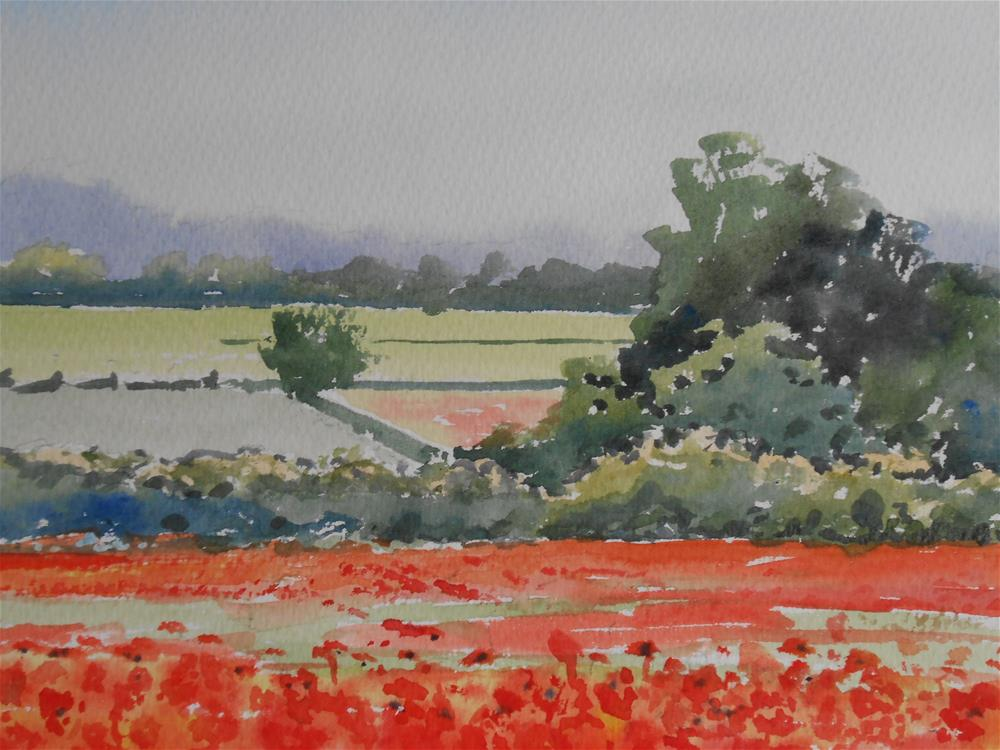 """Fields of Scarlet"" original fine art by Graham Findlay"