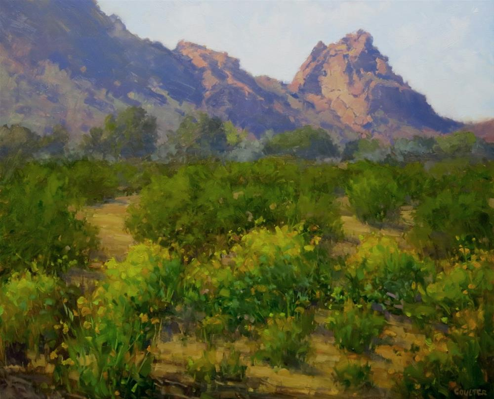 """Brittle Bush at Camelback Mountain"" original fine art by James Coulter"