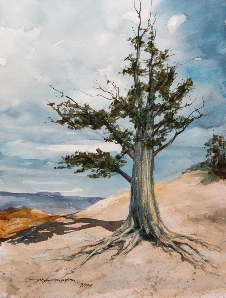 """""""Bristlecone Pine, Bryce Canyon"""" original fine art by Rafael DeSoto Jr."""