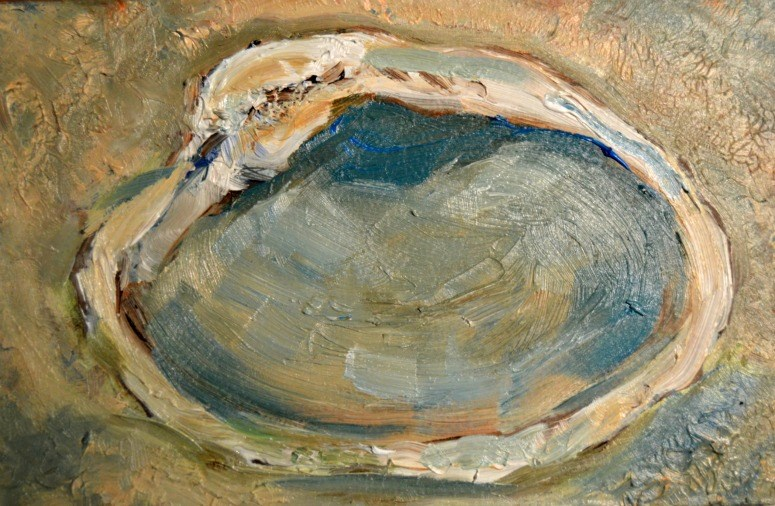 """Clam Shell"" original fine art by Claudia Finn"