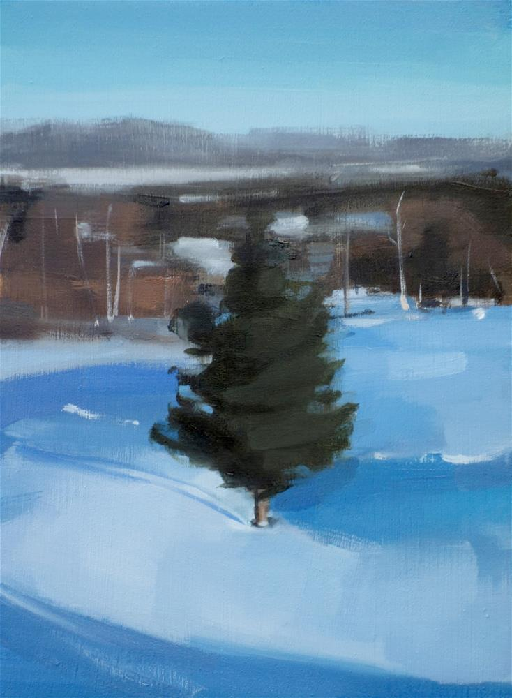 """Lone Pine in Sanbornton, NH (no.115)"" original fine art by Michael William"